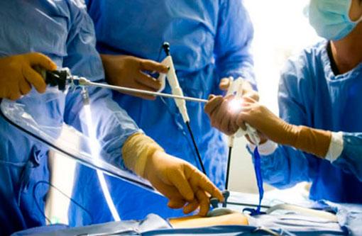 Ветеринар хирург в Москве